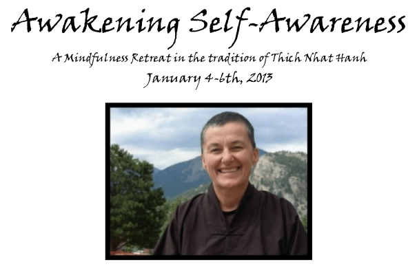 Awakening Self-Awareness, January 4-6th, 2013